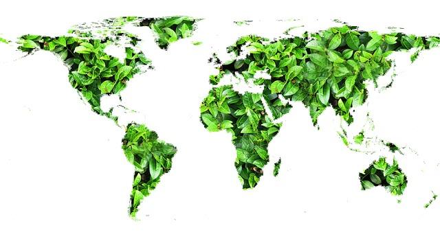 Verdenskart lagd av blader. Montage.