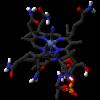 Vitamin B12-molekylet. Kilde: Wikipedia