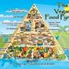 Bilde: Vegan Food Pyramid