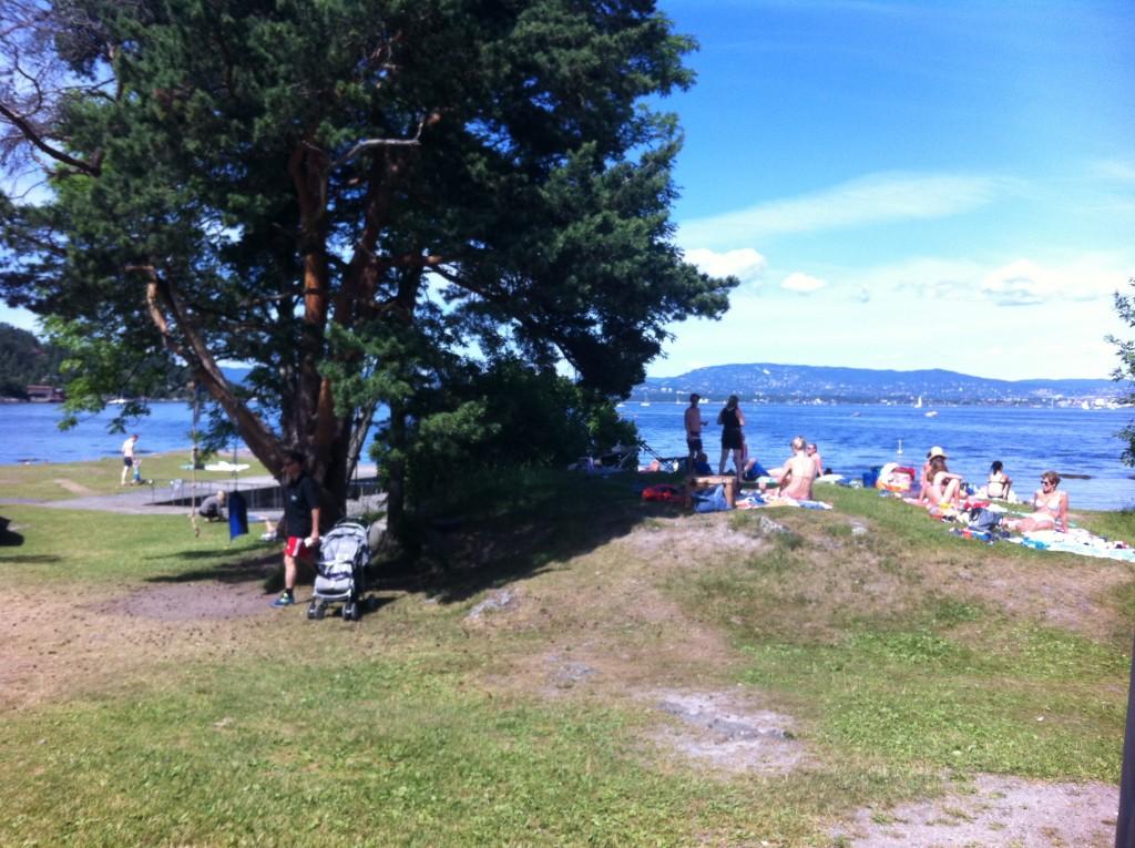 Utsikt fra Hellviktangen kafé. Foto.