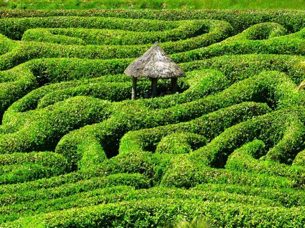 Det er ikke så lett å navigere labyrinten av informasjon man utsettes for hver dag. Foto: Pixabay.com